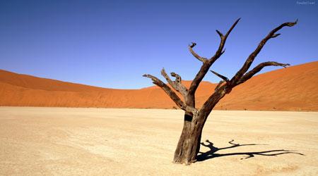 Atravesando el desierto espiritual