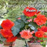 Versículo Bíblico Diario – Salmos 94:18,19
