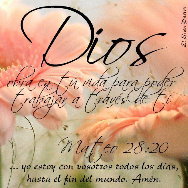 Mateo 28-20 reflexiones cristianas