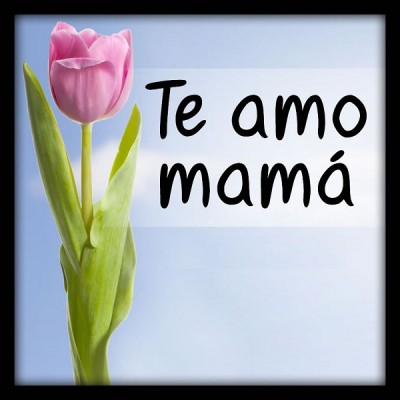 te amo mamá frases bonitas