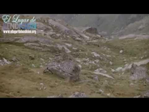 """VIDEO CRISTIANO DE REFLEXION EL OSO Y EL PUMA SALMO 91 NO TEMAS YO ESTOY CONTIGO """"JEHOVA ME PROTEGE"""""""