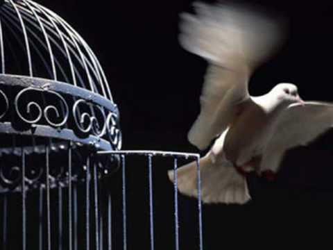 Videos de reflexiones cristianas la prisión  de la necesidad